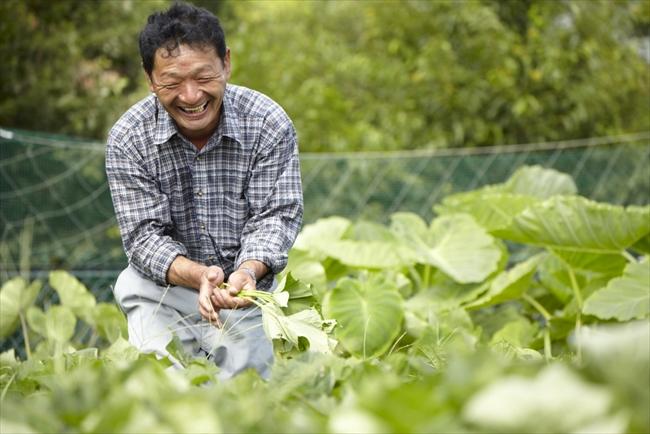 農業歴50年、育つわが子に思わず笑みがこぼれる